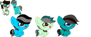 OC Ship Foals for foxIess by MadWhovianWithABox