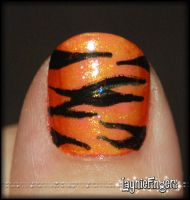 Gradient Tiger Mani Up Close by mslaynie