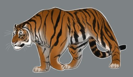 Painted Tiger by PEEP1897