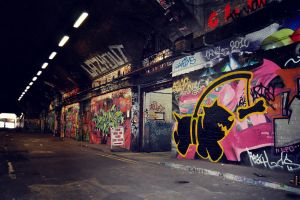 'Chasing Bones' Leake Street by ThePpeGFX