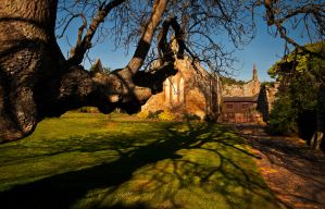 Hulne Priory 2 by newcastlemale
