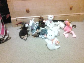 Most of my ORIGINAL BEANIE BABY collection. by MysteryCatGames