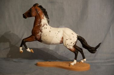 Indigo - Custom Bay Appaloosa Breyer Wyatt by Izzadorable