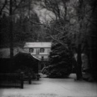 Winterstille by Woman-of-DarkDesires