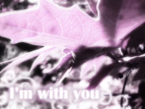 I'm with you by kamyar-infinity