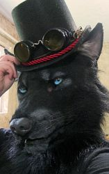 Werewolf mask with a tophat by Crystumes