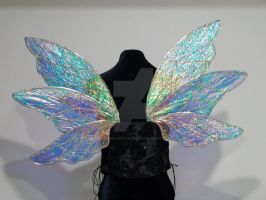 Blue Fairy Wings by FairyberryBlossoms