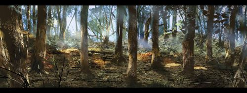 Forest by amatoy