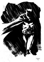 Batman by stokesbook