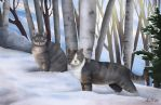 Winter Cats by Endless-Fantasy-Art