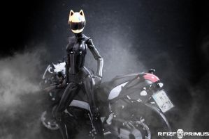Celty Sturluson - Figma #SP-081 Shot 1 by raveka
