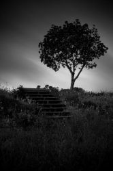 Alone by aaron-r-photography
