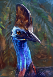 cassowary by AlaxendrA