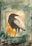 Crow, The Watcher ACEO by SethFitts