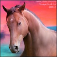 HEE Premade Stable Avatar | Sunset Bay by ElysianEquine