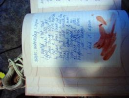 Suicide via Diary by smoothmastery