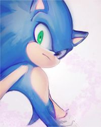 +SONIC+ by panafal