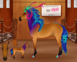 4800 Custom for Fade--Touched by EquusBallatorSociety
