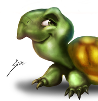 Turtle by samwdean