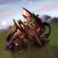 Field fun by Segraece