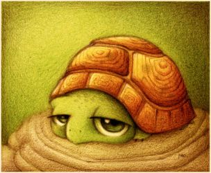 Tortuga. by faboarts
