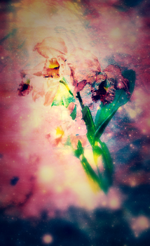 Orchid Galaxy by SBsStampAttack