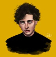 Timothee by Danieh