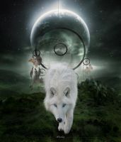 Wolf by iblushay