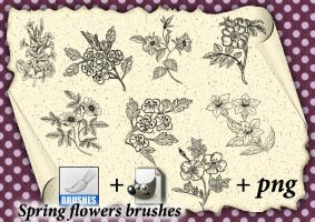 Spring flowers brushes  01 by roula33