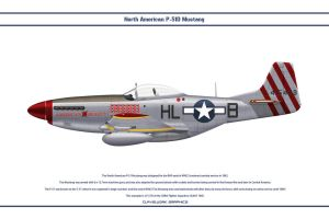 Mustang USAAF 308th FS 1 by WS-Clave