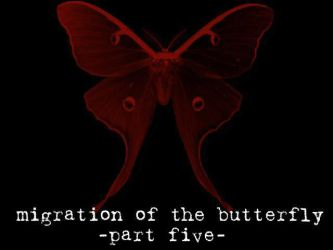 Migration of the Butterfly, 5 by suture