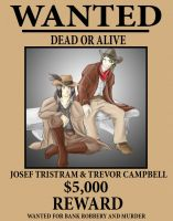 Wanted - Dead or Alive by tcat