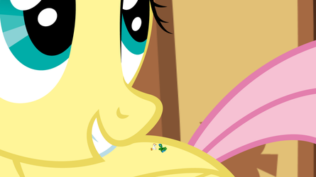 Fluttershy's Tiny Friends and Family by Radiant-Sword
