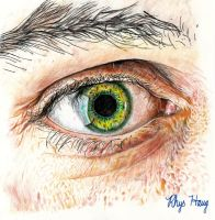 Eye Competition Entry by rhyshaug