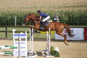 Level 5 Showjumping - L-Springen 29 by LuDa-Stock