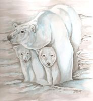 Polar Bear by Batman4art