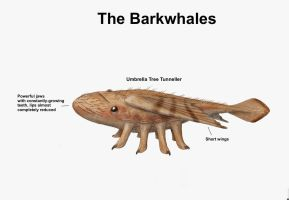 REP: The Barkwhales by Ramul