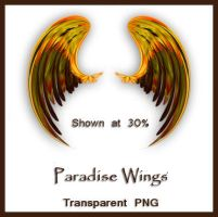 Paradise Wings by shd-stock