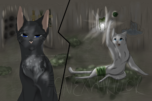 I'll Throw Lower...Jayfeather/Cinderheart by OneXWarrior