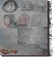 2014/2015 Sketch + WIP Collection by Dead-ShdwWolf