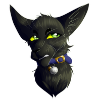 Crow (Commission) by WarriorCat3042