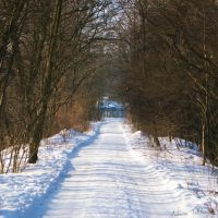 Road in winter by MisterMistrz