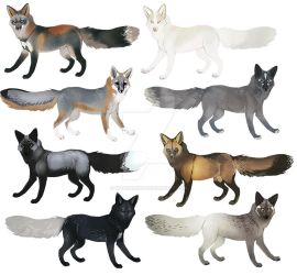 Fox Colors II by witherlings