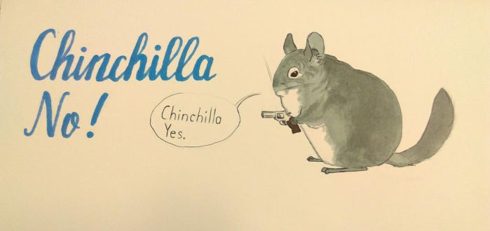 Chinchilla No! by TheRiseFluffyFox
