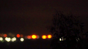Bokeh Tree Cinemagraph by todaywiththeCJB