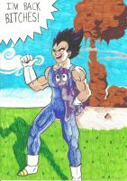 Vegeta- I'm back by methaw