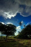 Playa Caldera Costa Rica 002 by otas32
