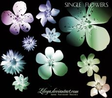 Single Flowers by Lileya