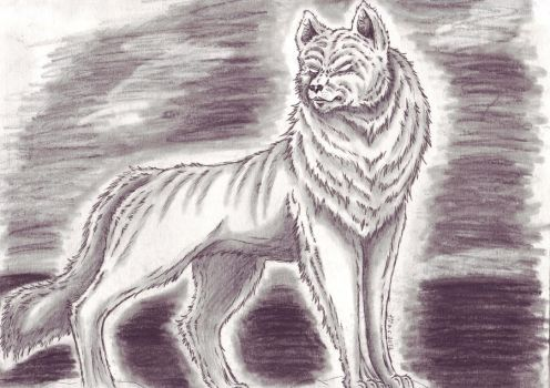 the Black Ghost Dog by Fenrienne