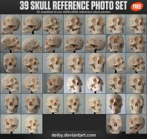 39 Skull Reference Photo Set by DesignFathoms